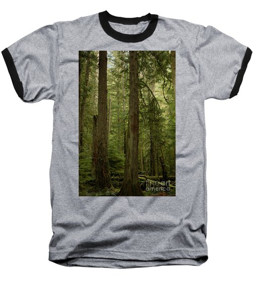 Cathedral Grove Baseball T-Shirt