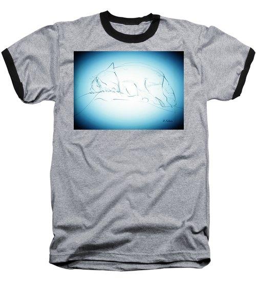 Catnap Baseball T-Shirt by Denise Fulmer