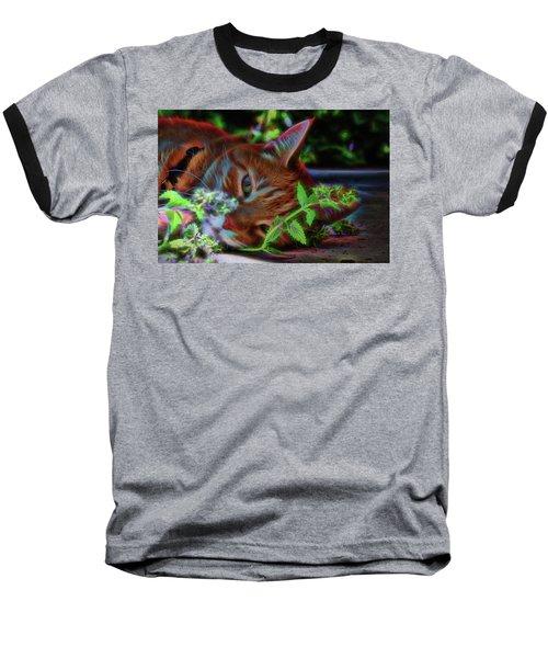 Catnip Chillin Baseball T-Shirt