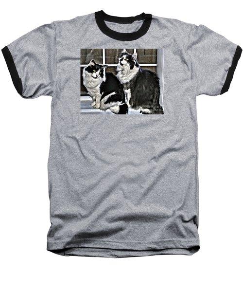 Cats In The Window Baseball T-Shirt