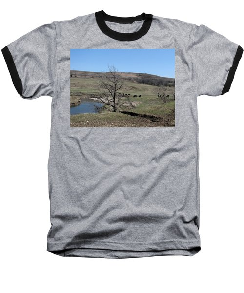Cattle Along Deep Creek Baseball T-Shirt