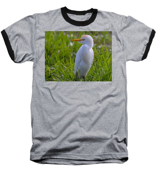 Cattle Egret Baseball T-Shirt