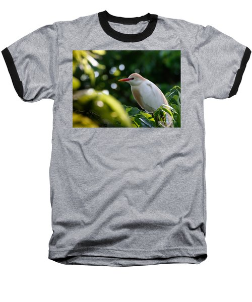 Cattle Egret In Oklahoma Baseball T-Shirt