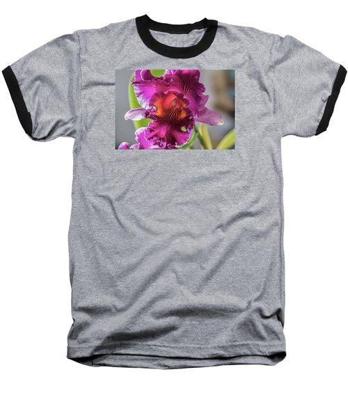 Cattleya Baseball T-Shirt by Alana Thrower