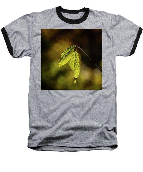 Caught In The Light Baseball T-Shirt