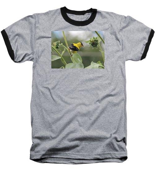 Caution Baseball T-Shirt by Yumi Johnson