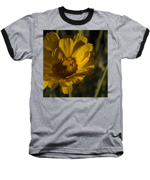 Baseball T-Shirt featuring the photograph Cave Creek Beauty And Shadows by Carolina Liechtenstein