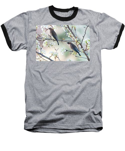 Cedar Wax Wing Pair Baseball T-Shirt