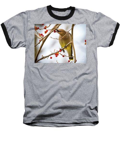 Cedar Waxwing Feeding  Baseball T-Shirt