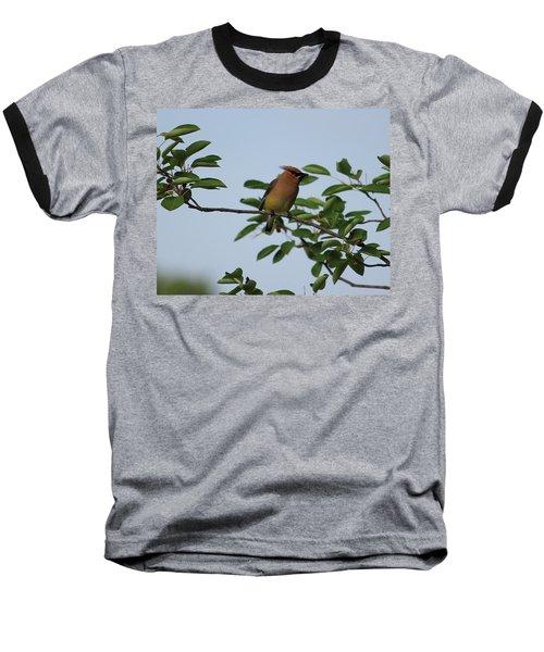 Cedar Waxwing Profile Baseball T-Shirt