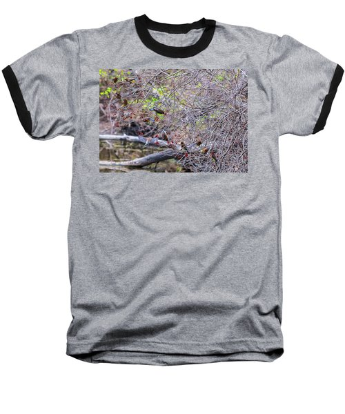 Baseball T-Shirt featuring the photograph Cedar Waxwings Feeding 2 by Edward Peterson