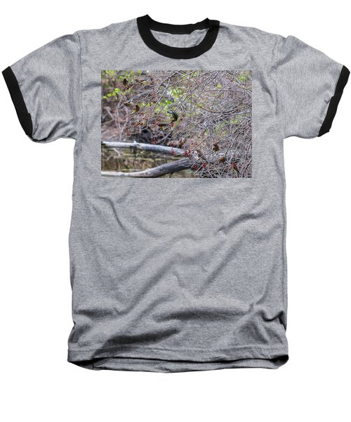 Baseball T-Shirt featuring the photograph Cedar Waxwings Feeding by Edward Peterson