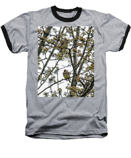 Cedar Waxwings In A Blossoming Tree Baseball T-Shirt