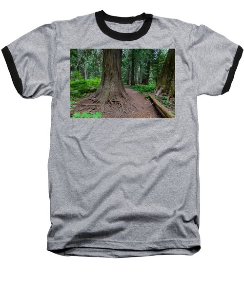 Baseball T-Shirt featuring the photograph Path Of Cedars by Fran Riley