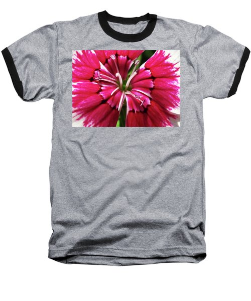 Center Of A Sweet William Baseball T-Shirt by Mary Ellen Frazee