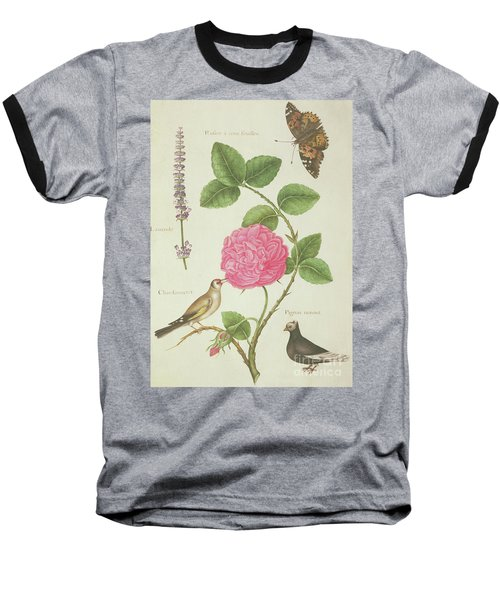 Centifolia Rose, Lavender, Tortoiseshell Butterfly, Goldfinch And Crested Pigeon Baseball T-Shirt by Nicolas Robert