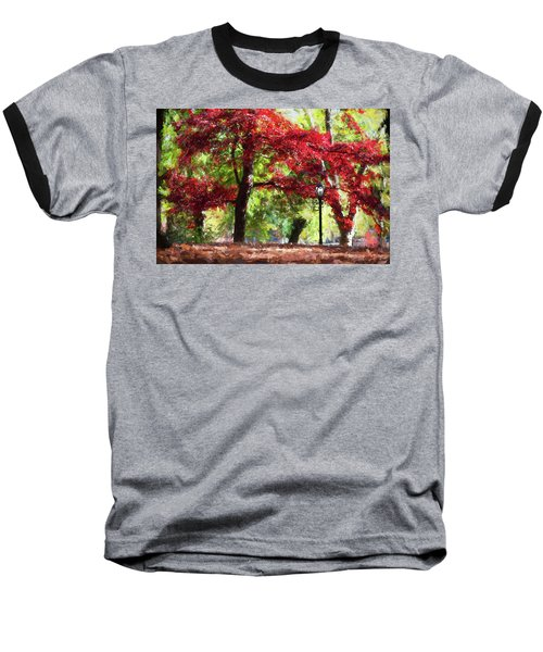 Central Park In Manhattan Baseball T-Shirt