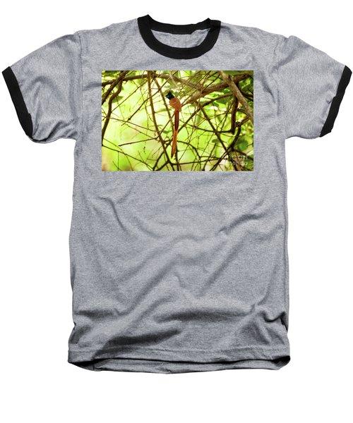 Ceylon Paradise Flycatcher Baseball T-Shirt