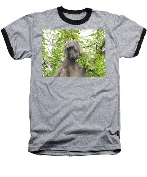Chacma Baboon Baseball T-Shirt