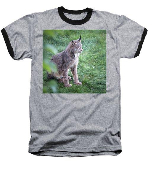 Champion Mama Lynx Baseball T-Shirt
