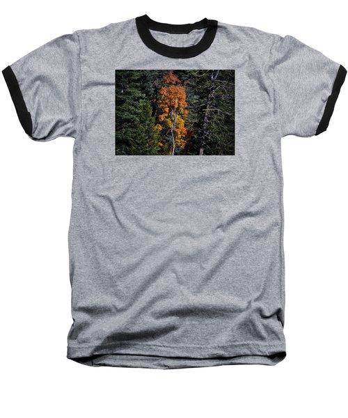 Change Of Seasons Baseball T-Shirt by Elaine Malott