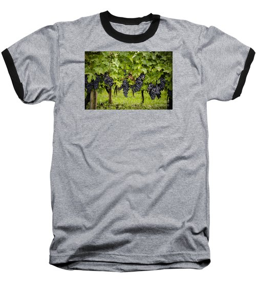 Chardonnay Grape Cluster Baseball T-Shirt by Perry Van Munster