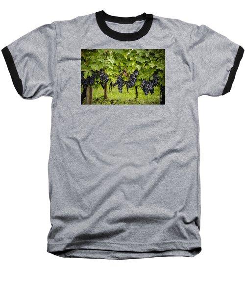 Chardonnay Grape Cluster Baseball T-Shirt