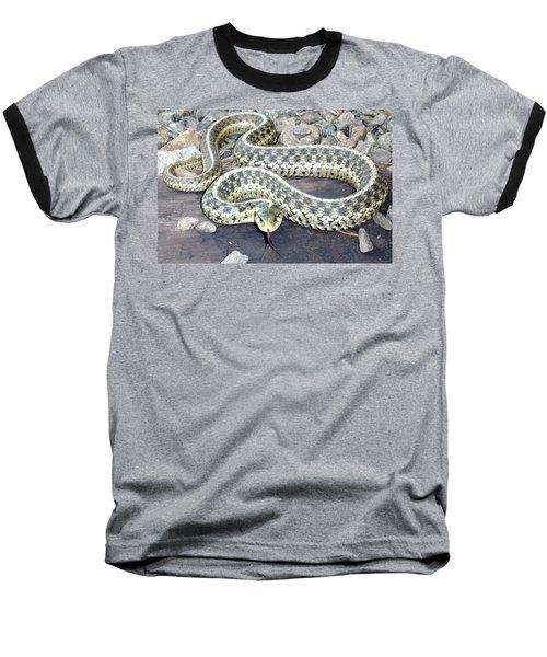 Checkered Garter Snake Baseball T-Shirt