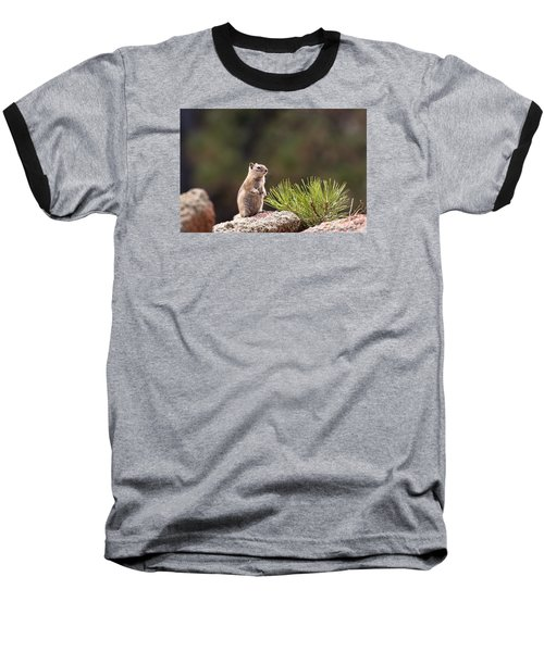 Baseball T-Shirt featuring the photograph Checking Things Out by Monte Stevens