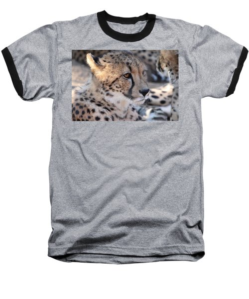 Cheetah And Friends Baseball T-Shirt