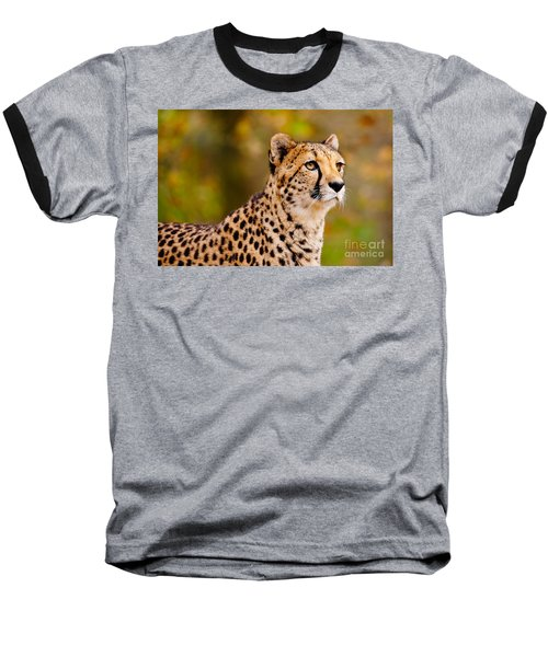 Cheetah In A Forest Baseball T-Shirt