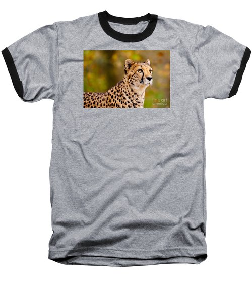 Cheetah In A Forest Baseball T-Shirt