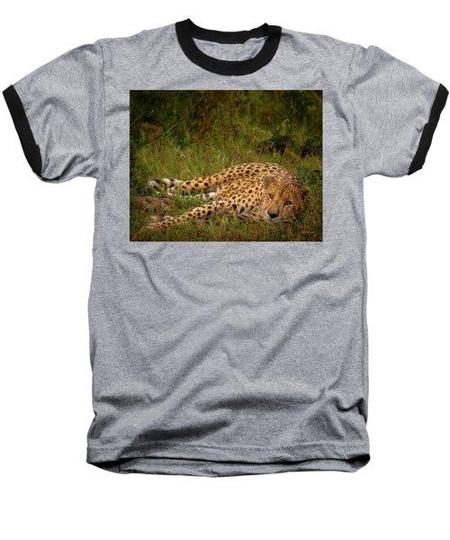 Cheetah Resting, Masai-mara Baseball T-Shirt