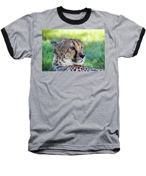 Cheetah Baseball T-Shirt