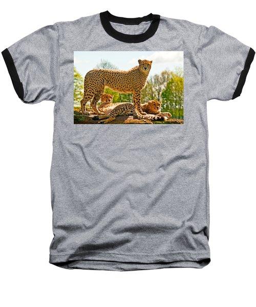 Cheetahs Three Baseball T-Shirt