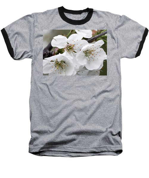 Cherry Blosoms Baseball T-Shirt