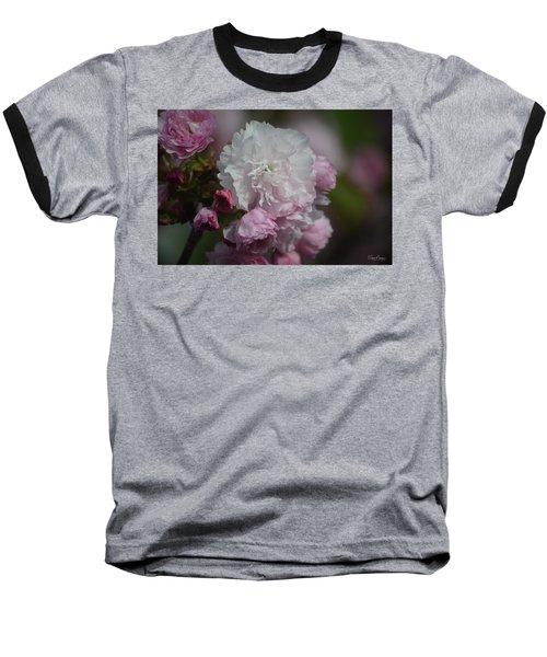 Cherry Blossom 2 Baseball T-Shirt