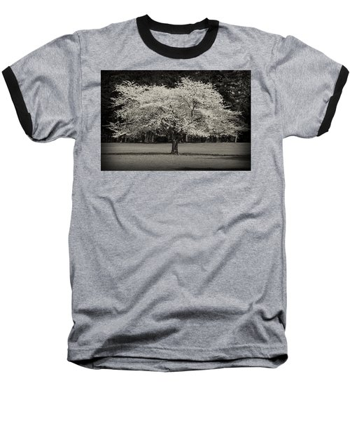 Cherry Blossom Tree - Ocean County Park Baseball T-Shirt