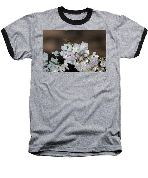 Cherry Blossoms Baseball T-Shirt by Glenn Franco Simmons