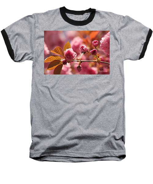 Cherry Blossoms Baseball T-Shirt by Judy Palkimas