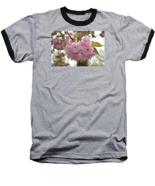 Cherry Blossoms Baseball T-Shirt by Linda Geiger