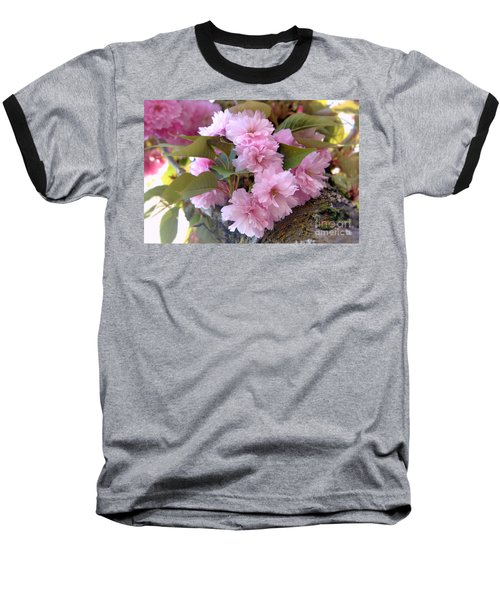 Cherry Blossoms Nbr2 Baseball T-Shirt by Scott Cameron