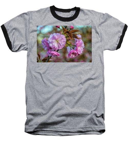 Cherry Blossoms Baseball T-Shirt by Pat Cook