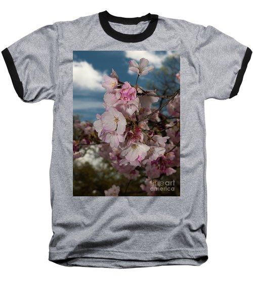 Cherry Blossoms Vertical Baseball T-Shirt