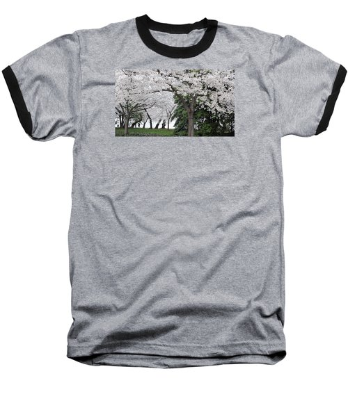 Cherry Blossoms Washington Dc Baseball T-Shirt by Steve Archbold