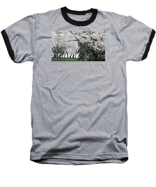 Cherry Blossoms Washington Dc Baseball T-Shirt