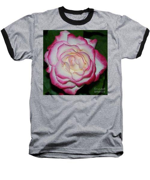 Cherry Parfait Rose 1 Baseball T-Shirt