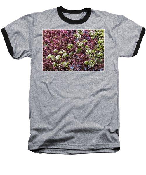 Cherry Tree And Pear Blossoms Baseball T-Shirt by Dora Sofia Caputo Photographic Art and Design