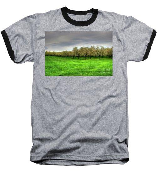 Cherry Trees Forever Baseball T-Shirt by Randy Pollard