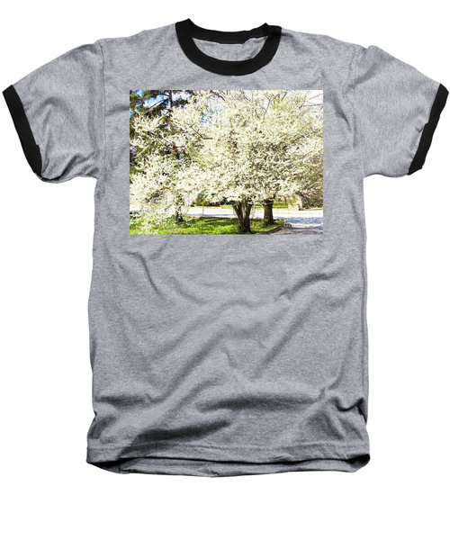 Cherry Trees In Blossom Baseball T-Shirt